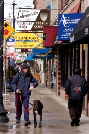 Shoppers in Andersonville neighborhood in Chicago