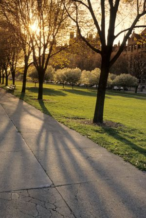 Midway Plaisance at University of Chicago in Hyde Park neighborhood in Chicago
