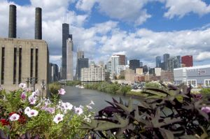 Chicago Skyline from Roosevelt Road with river - Chicago Skyline Photography