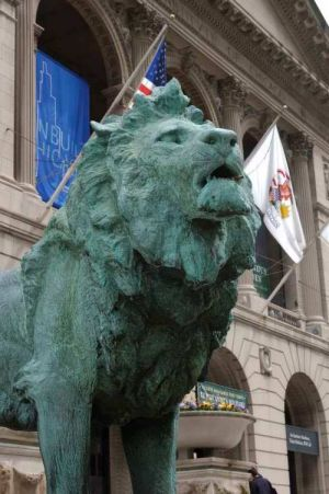 Lion at the Chicago Art Institute  - Chicago photographs