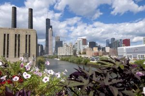 Chicago Skyline from Roosevelt Road with river - Photographs of Chicago