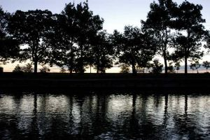 Lincoln Park lagoon at dawn - Chicago lakefront photographs
