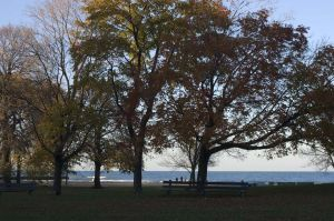 Lake in Rogers Park,  - Chicago lakefront photographs