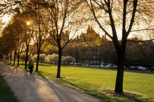 Midway Plaisance at the University of Chicago