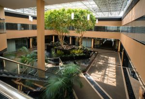 Office building atrium, photography
