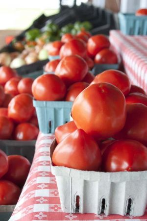 Succulent ripe tomatoes at the Dutch Country Market